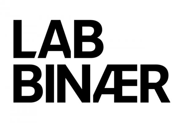 lab_binaer_logo