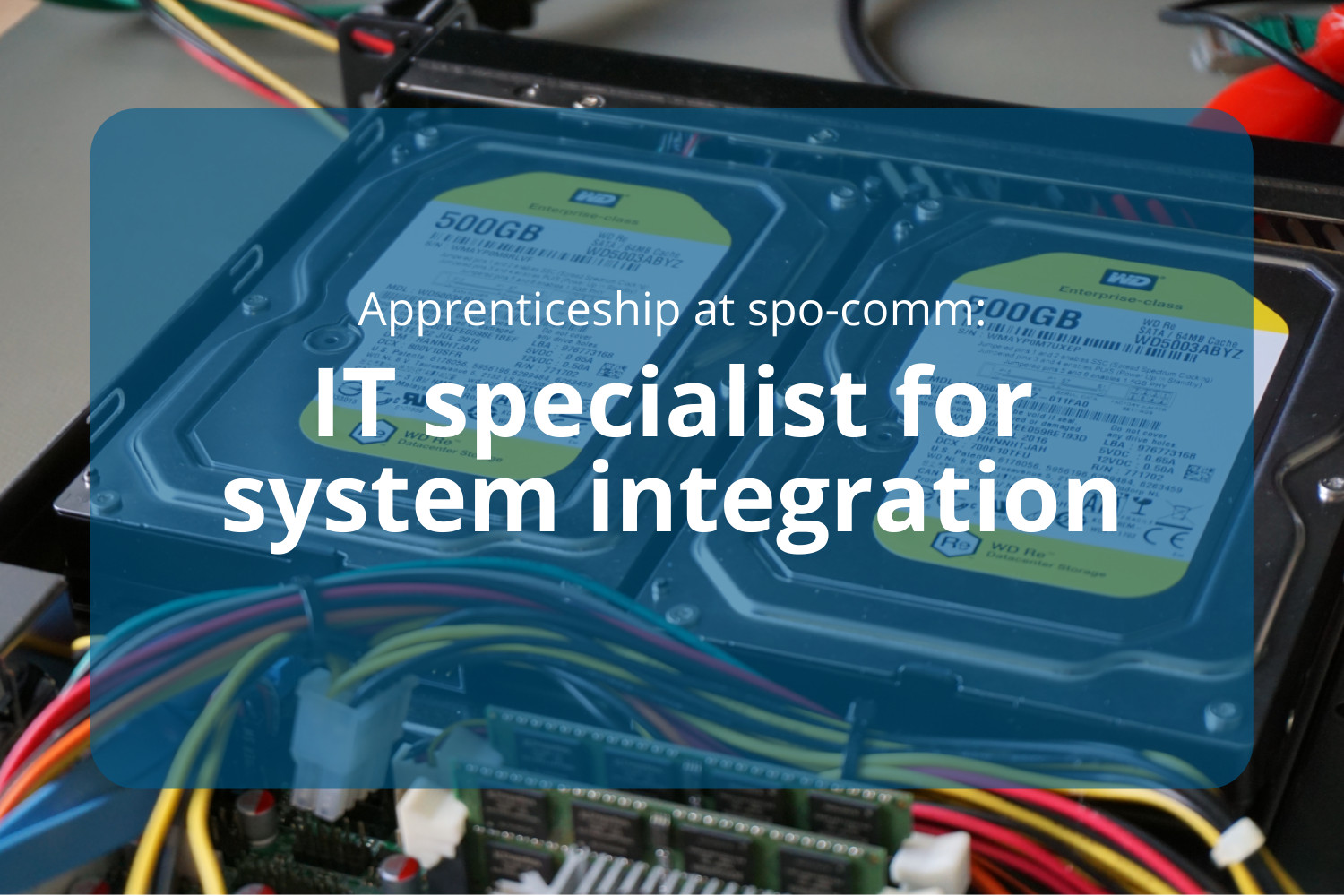 Apprenticeship as an IT specialist for system integration at spo-comm